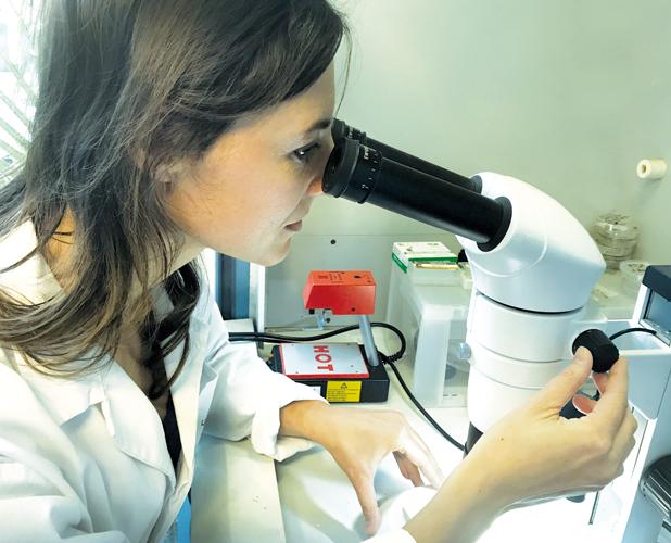Geoscienza - Servizi - Cia Lab - Analisi e Consulenza